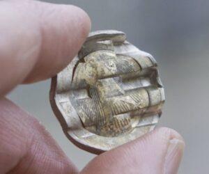 Sfałszowali 29 ton euro monet.