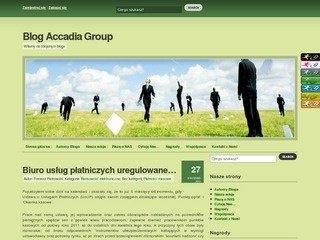 Blog.Accadia.pl Stworzenie oraz prowadzenie bloga firmowego Accadia Group S.A.