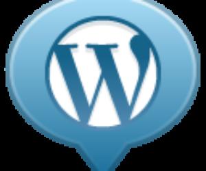 Tworzenie stron internetowych CMS (WordPress lub Joomla)