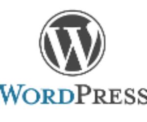 Dlaczego nie warto kupować szablonu do WordPress?