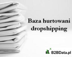 hurtowanie_dropshipping