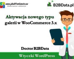 Doctor B2BData – Aktywacja nowego typu galerii w WooCommerce 3.0