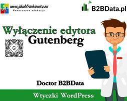 Doctor B2BData – Wyłączenie edytora Gutenberg